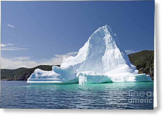 Greeting Card featuring the photograph Iceberg Newfoundland Canada by Liz Leyden