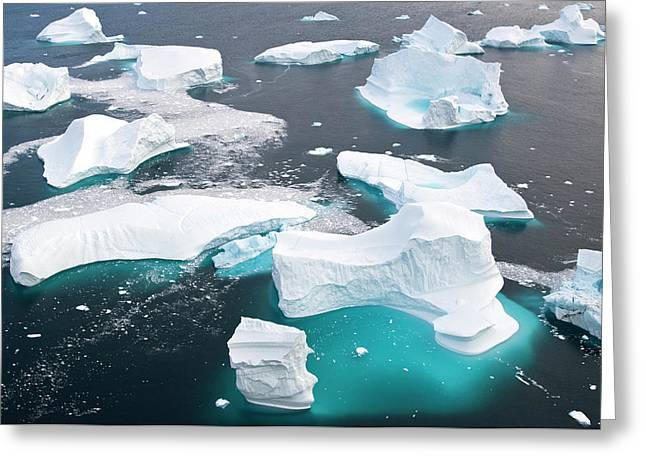 Icebergs, Cape York, Greenland Greeting Card by Daisy Gilardini