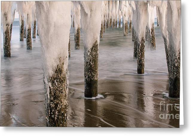 Iced Greeting Card by Paul Noble