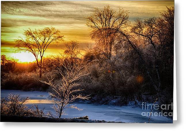 Iced Sunset Greeting Card by Wanda Clowater