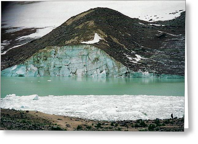 Icefields Greeting Card by Shirley Sirois