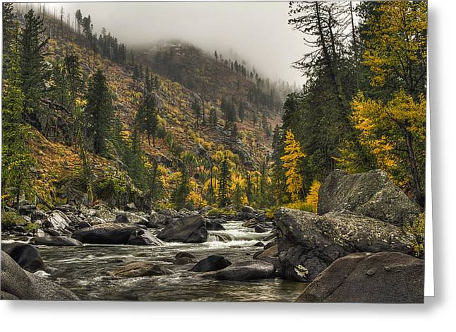 Icicle Creek Hues Greeting Card by Mark Kiver
