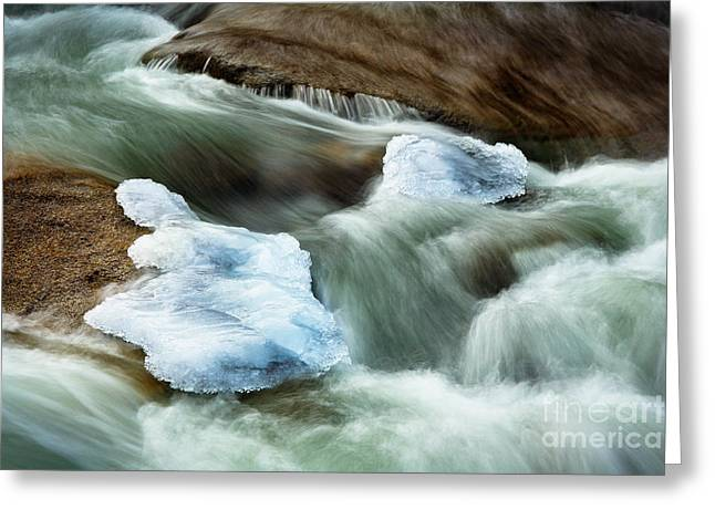 Icicle Creek Greeting Card by Inge Johnsson