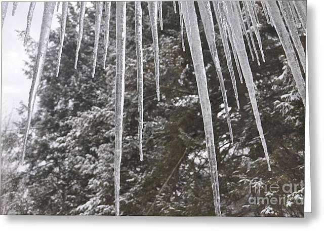 Icicle Dreams Greeting Card