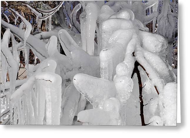 Icicles 1 Greeting Card