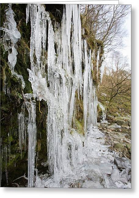 Icicles At Tilberthwaite Greeting Card by Ashley Cooper