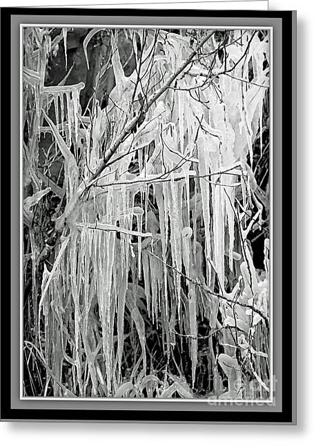 Icicles In Black And White Greeting Card