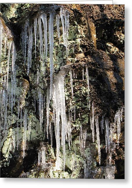 Greeting Card featuring the photograph Icicles by Melissa Stoudt