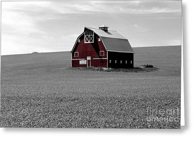 Icon Of The Palouse Greeting Card by Sharon Elliott