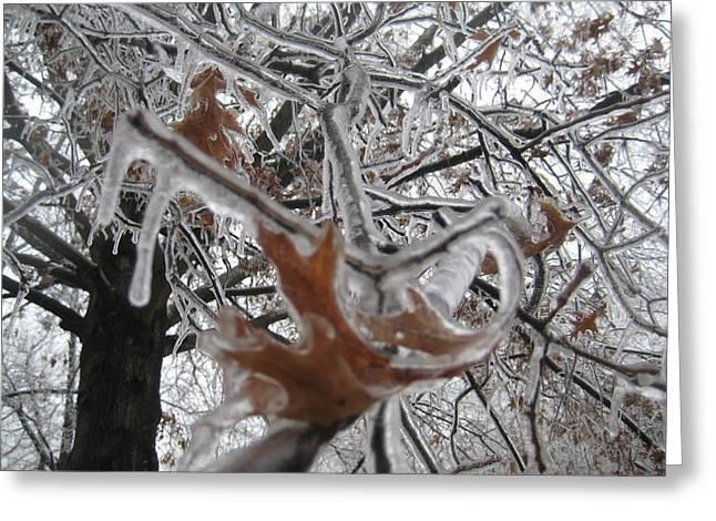 Icy Beckoning Greeting Card