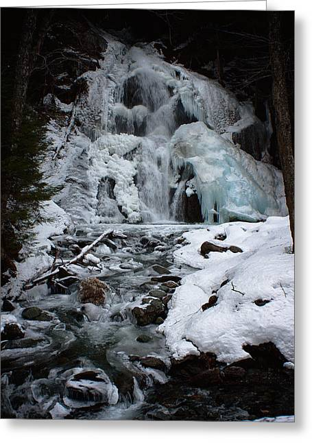 Icy Dreams Greeting Card by Jeff Folger