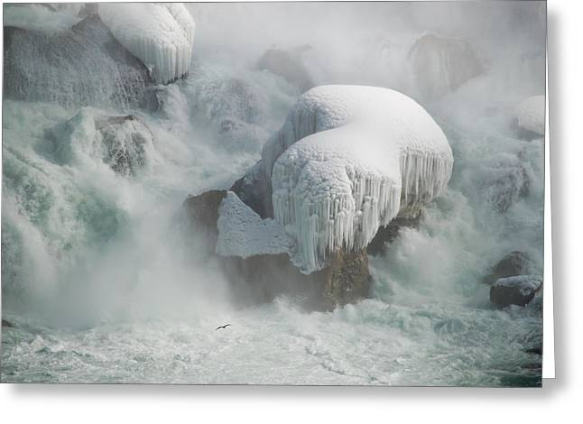 Icy Falls Greeting Card by Tracy Munson