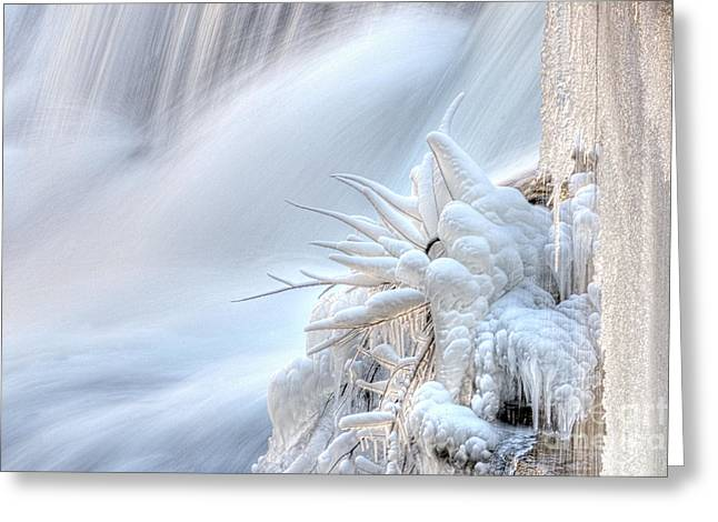 Icy Fingers Greeting Card by Wanda Krack