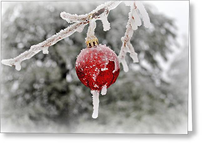 Icy Glazing Greeting Card