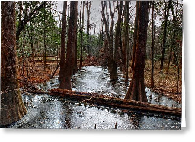 Icy River In The Bottomland Forest Greeting Card