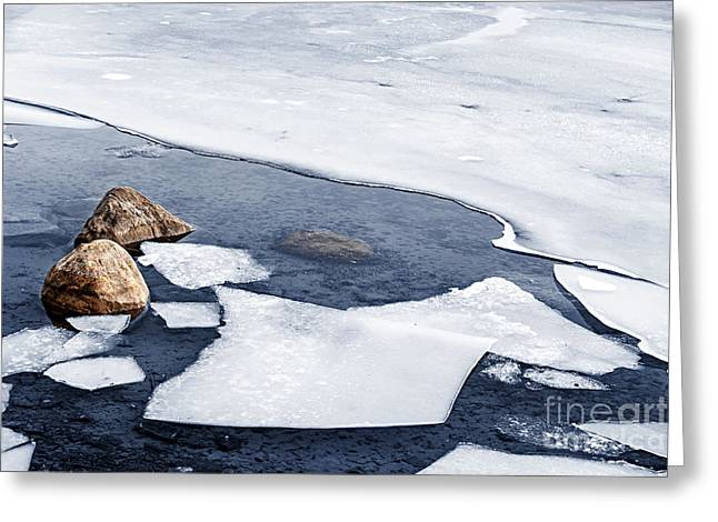 Icy Shore In Winter Greeting Card by Elena Elisseeva