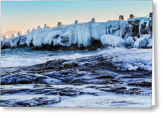 Icy Shores Greeting Card