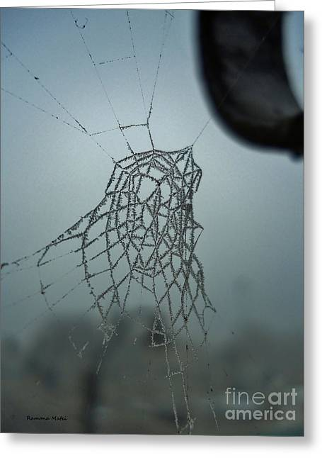 Greeting Card featuring the photograph Icy Spiderweb by Ramona Matei