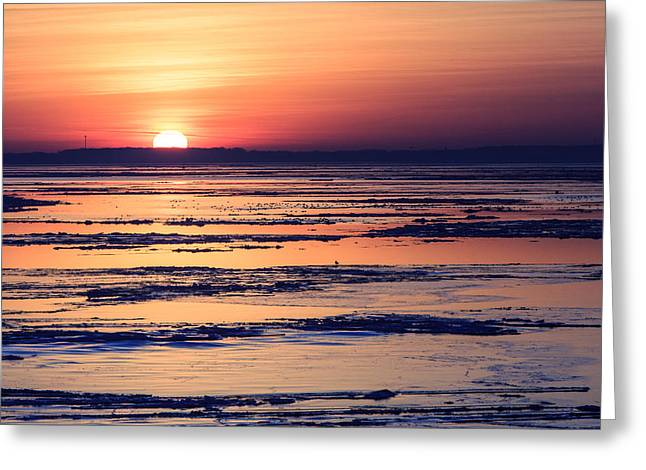 Greeting Card featuring the photograph Icy Sunrise by Jennifer Casey