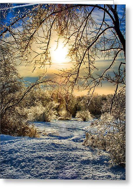 Icy Sunrise Greeting Card by Ryan Crane