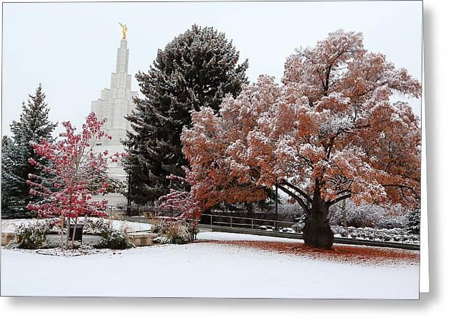 Idaho Falls Temple Winter Greeting Card by David Andersen