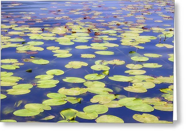 Idyllic Pond Greeting Card