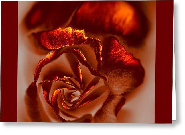 If A Rose Is A Rose Greeting Card by Li   van Saathoff