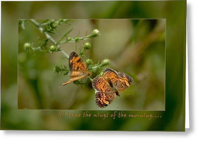 If I Take The Wings Of The Morning Greeting Card by Denise Beverly