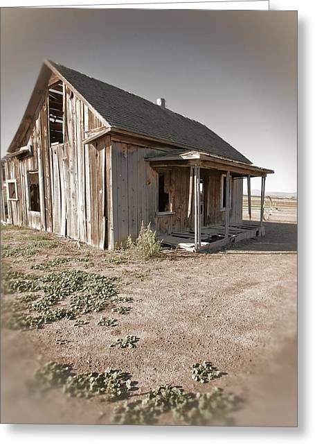 If This Homestead Could Speak Greeting Card by Bonnie Bruno