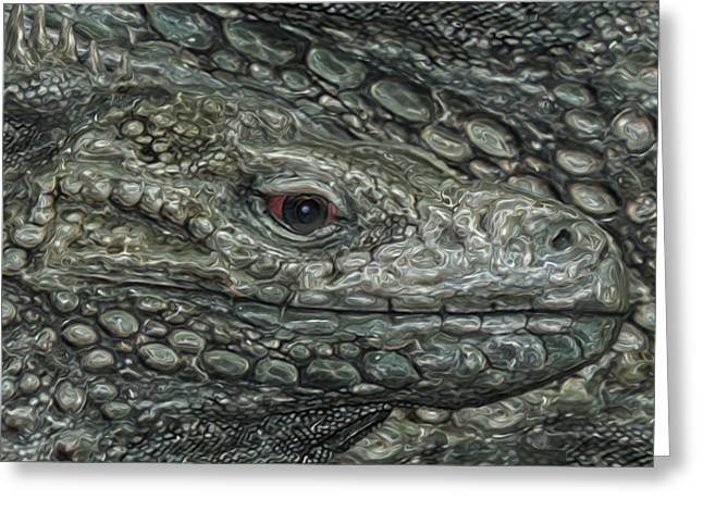 Iguana Greeting Card by Jack Zulli