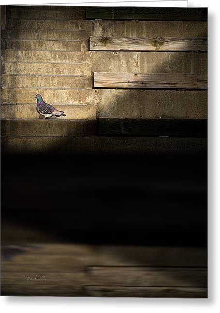 Il Piccolo Guardiano Greeting Card by Bob Orsillo