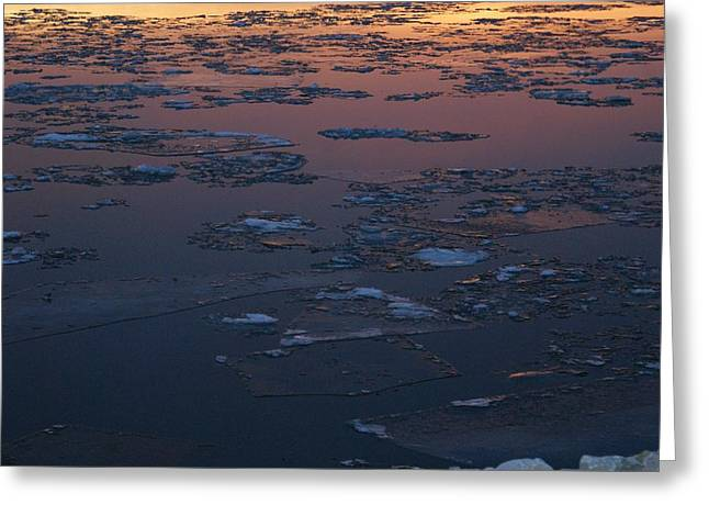 Illinois Floe Greeting Card by Joe Bledsoe