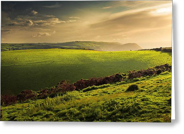 Illuminated Evening Landscape North Devon Greeting Card by Dorit Fuhg