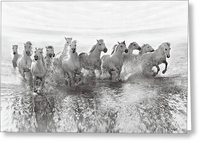 Illusion Of Power (13 Horse Power Though) Greeting Card