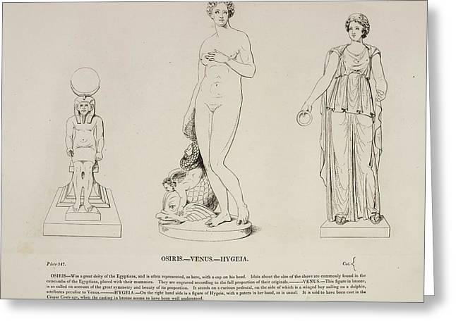 Illustration Of Human Figure Statues Greeting Card by British Library