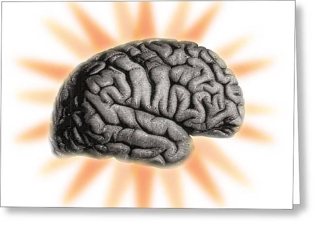 Illustration Of The Brain Greeting Card by Dennis Potokar