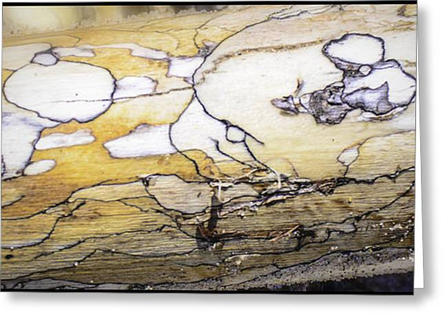 Images In Drift Wood Greeting Card