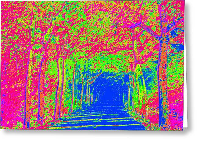 Imaginary Road Greeting Card by L Brown