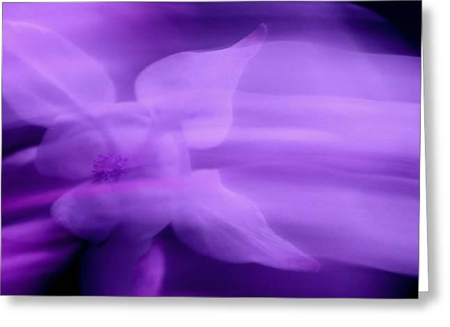Imagination In Purple Greeting Card