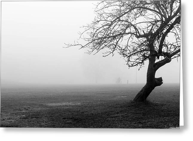 Black And White Abstract Of Tree In Fog Greeting Card by Aldona Pivoriene