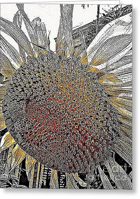 Imagine The Color Greeting Card by Michael Hoard