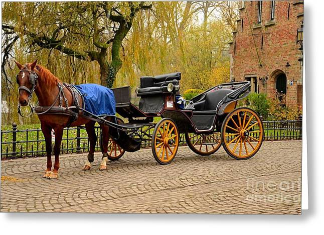 Immaculate Horse And Carriage Bruges Belgium Greeting Card