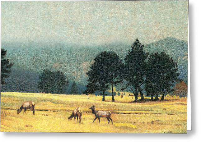 Impression Evergreen Colorado Greeting Card