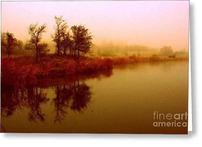 Impressionist Reflection Greeting Card by Julie Lueders