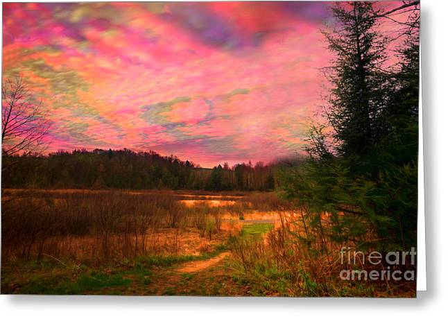Impressionistic Morning View Of West Virginia Botanic Garden Greeting Card by Dan Friend
