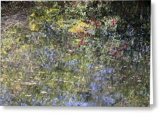 Greeting Card featuring the photograph Impressions Of Autumn by Andrew Pacheco