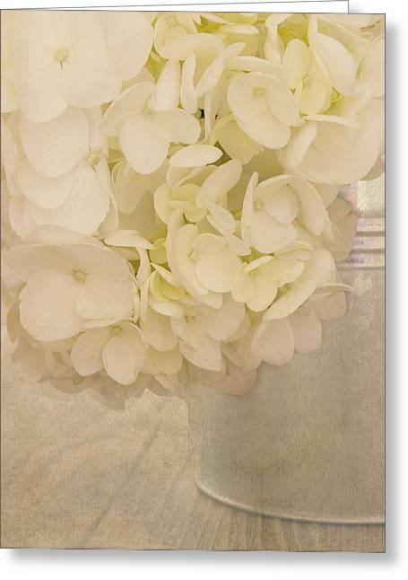 In A Gentle Way Greeting Card by Kim Hojnacki