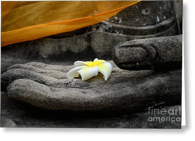 In Buddha's Hands II Greeting Card by Dean Harte