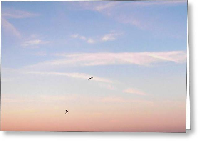 Greeting Card featuring the photograph In Flight Over Rehoboth Bay by Pamela Hyde Wilson