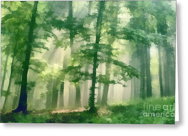 In Forest Greeting Card by Odon Czintos